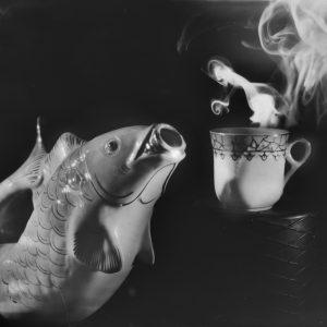 Fish waiting for coffee break 2